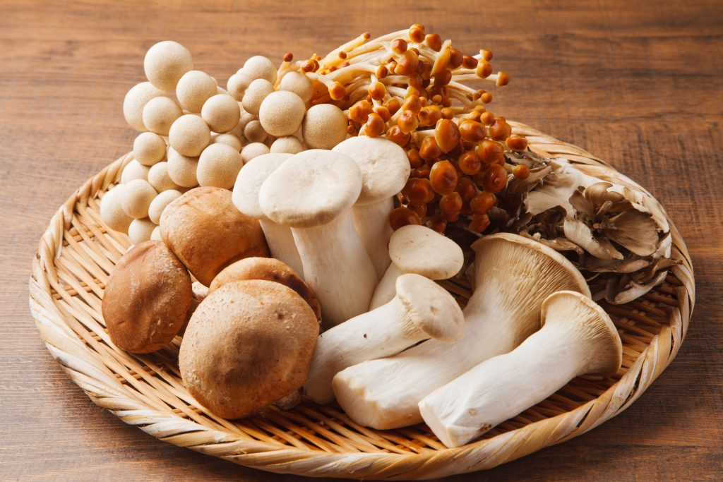 King Oyster and other Mushrooms