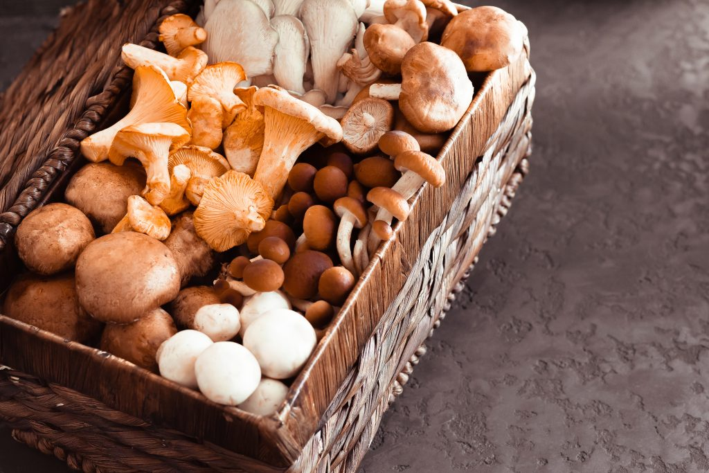 Mushrooms have great health benefits