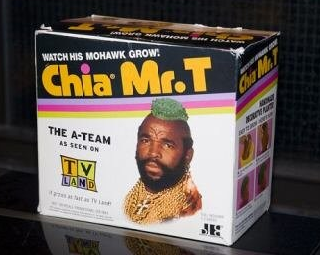 Box with Chia Mr. T